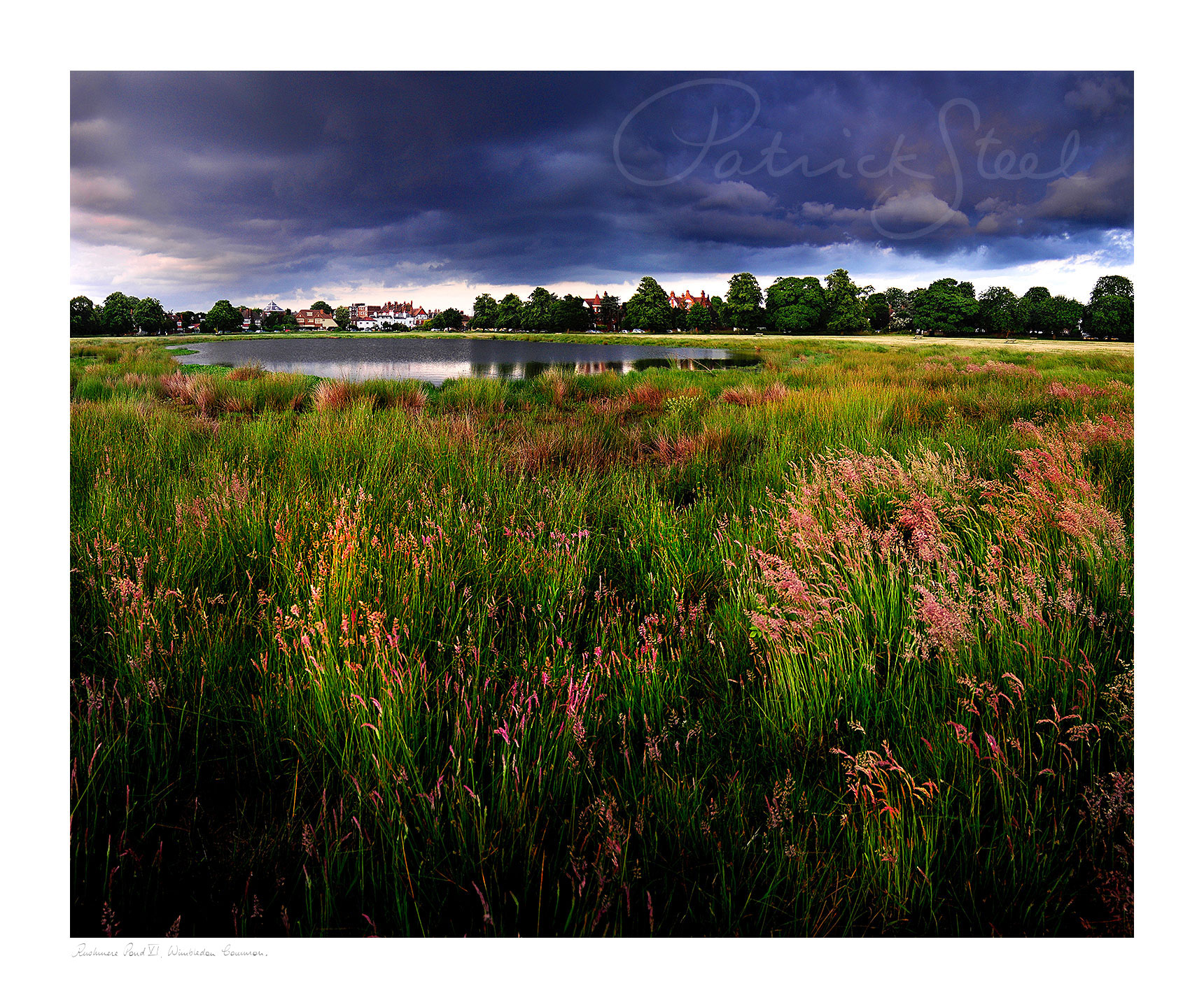 Title: Rushmere Pond VI, Wimbledon Common | <a href=