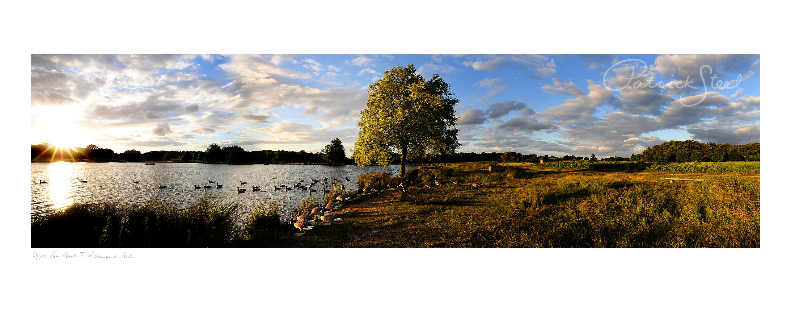 Title: Upper Pen Pond I, Richmond Park | <a href=