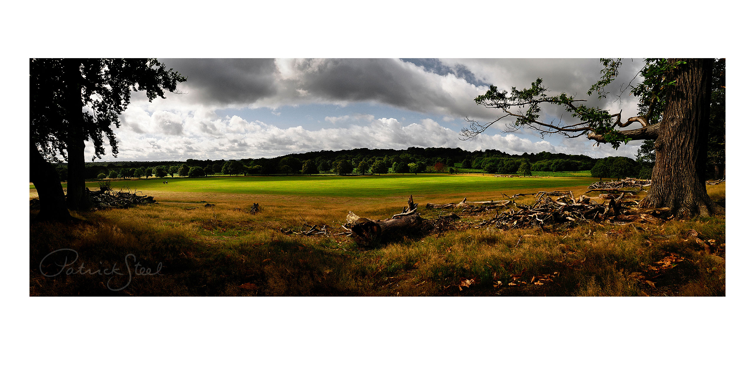 Title: View South West from Spankers Hill Wood, Richmond Park | <a href=