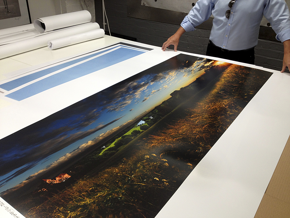 Sample of 'Meadowlands I, Richmond Hill printed to 6ft wide