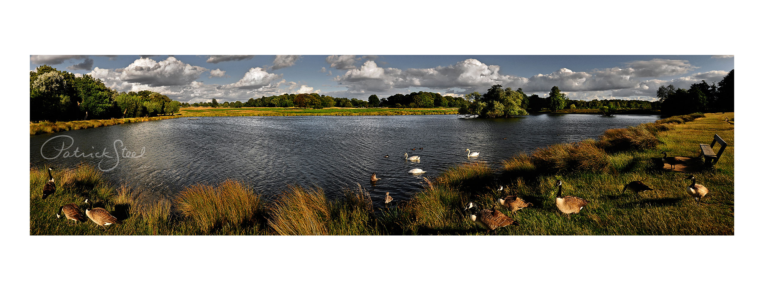 Title: View South East, Lower Pen Pond, Richmond Park | <a href=