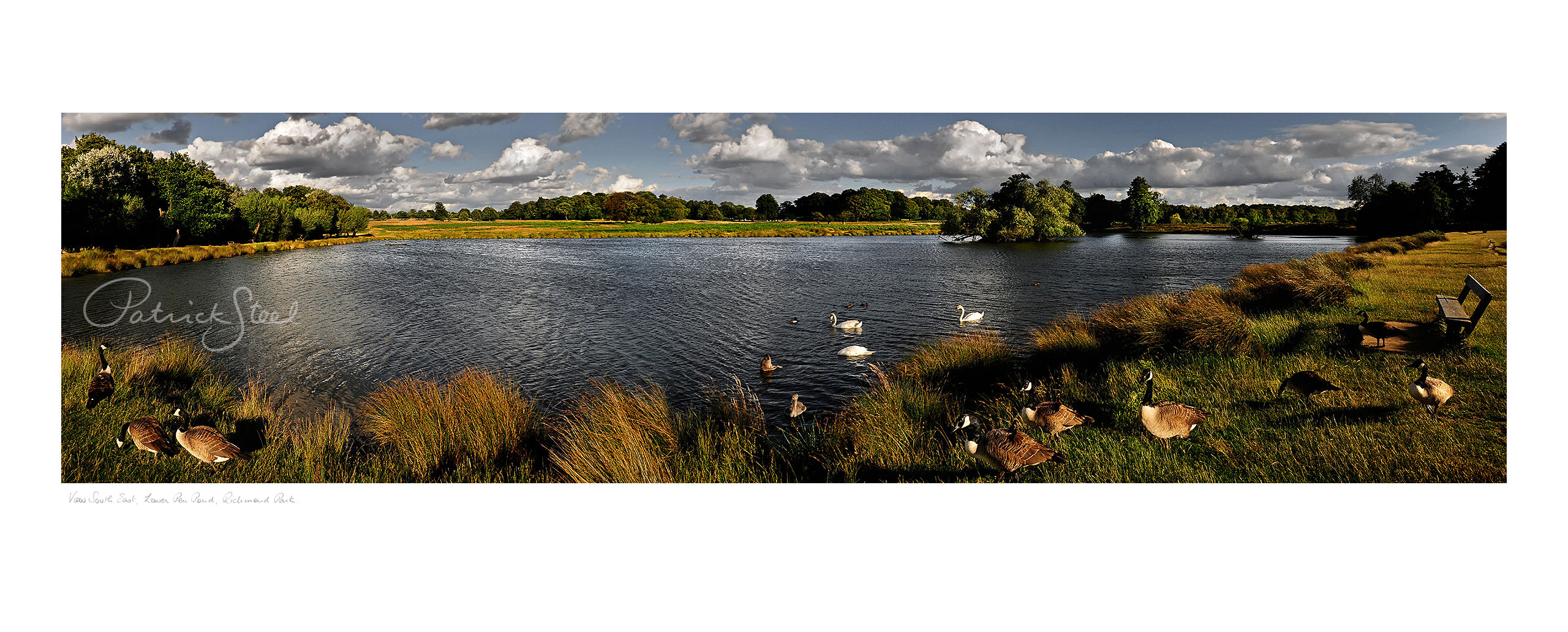 Landscape Photography in Richmond Park : Lower Pen Pond